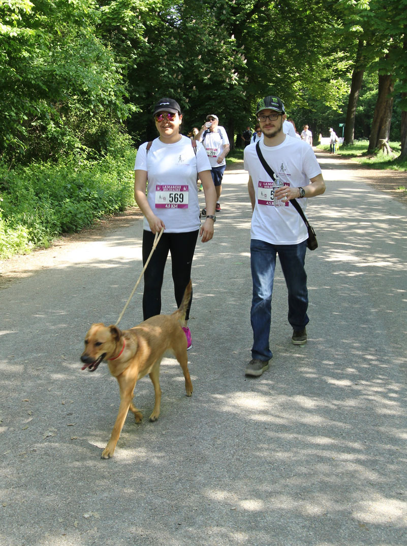 chiens-guides-30ans-marche-338.jpg
