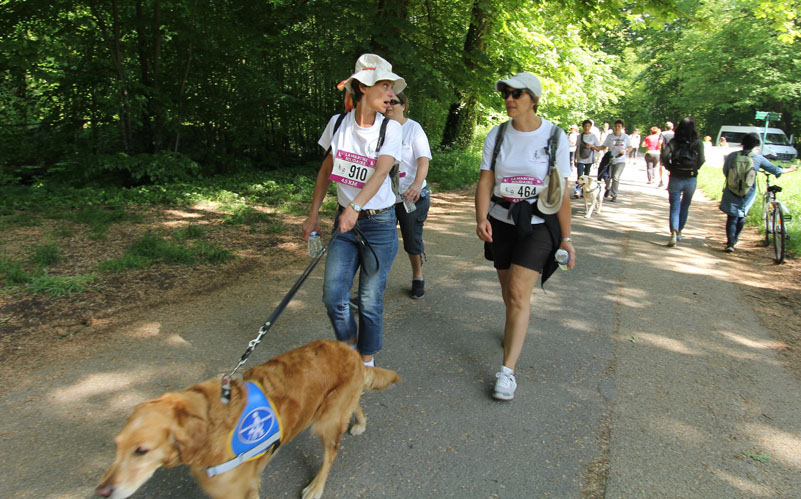 chiens-guides-30ans-marche-339.jpg
