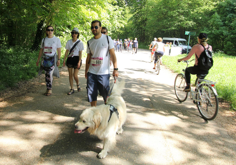 chiens-guides-30ans-marche-348.jpg