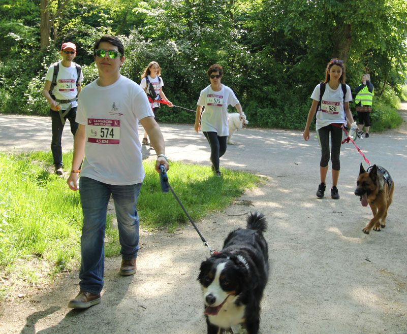 chiens-guides-30ans-marche-427.jpg