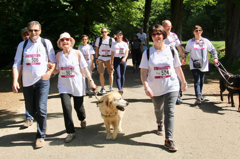 chiens-guides-30ans-marche-448.jpg