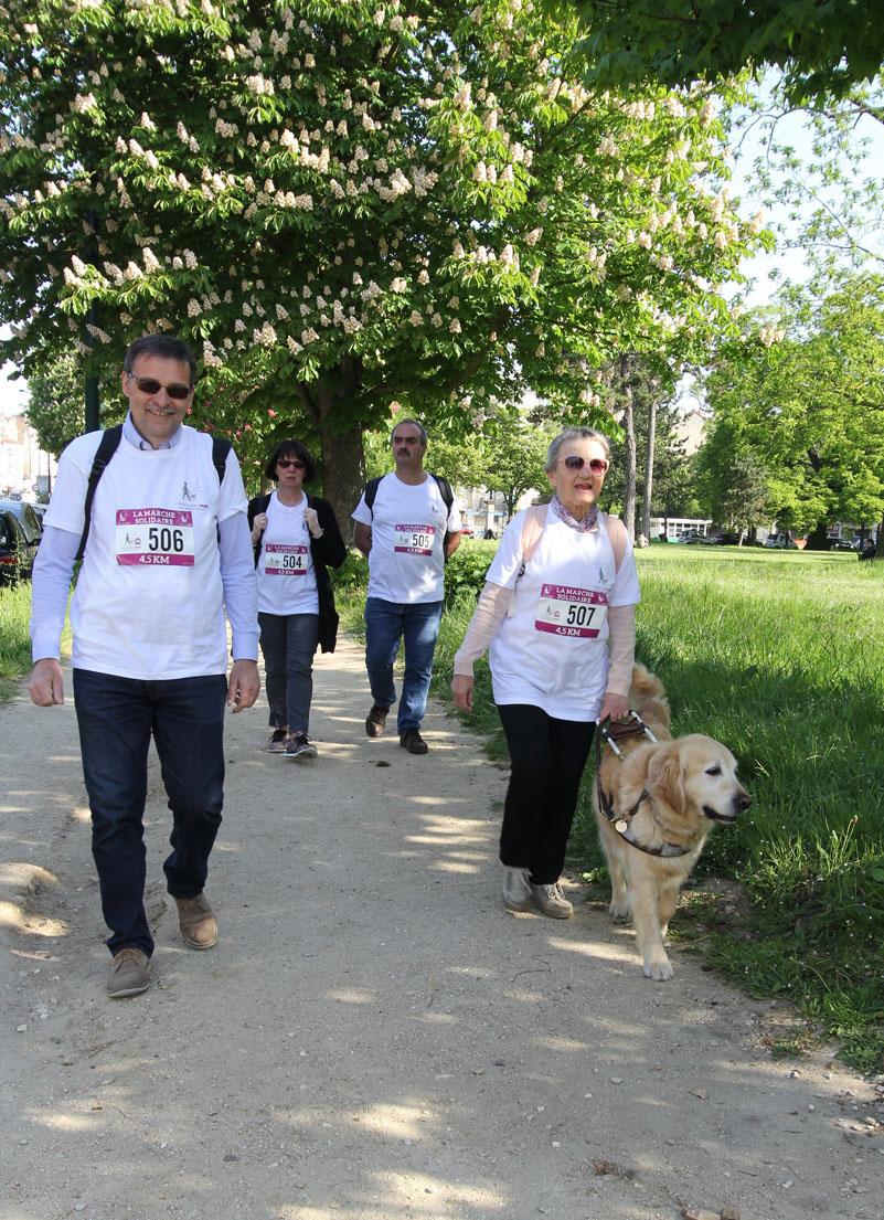 chiens-guides-30ans-marche-449.jpg