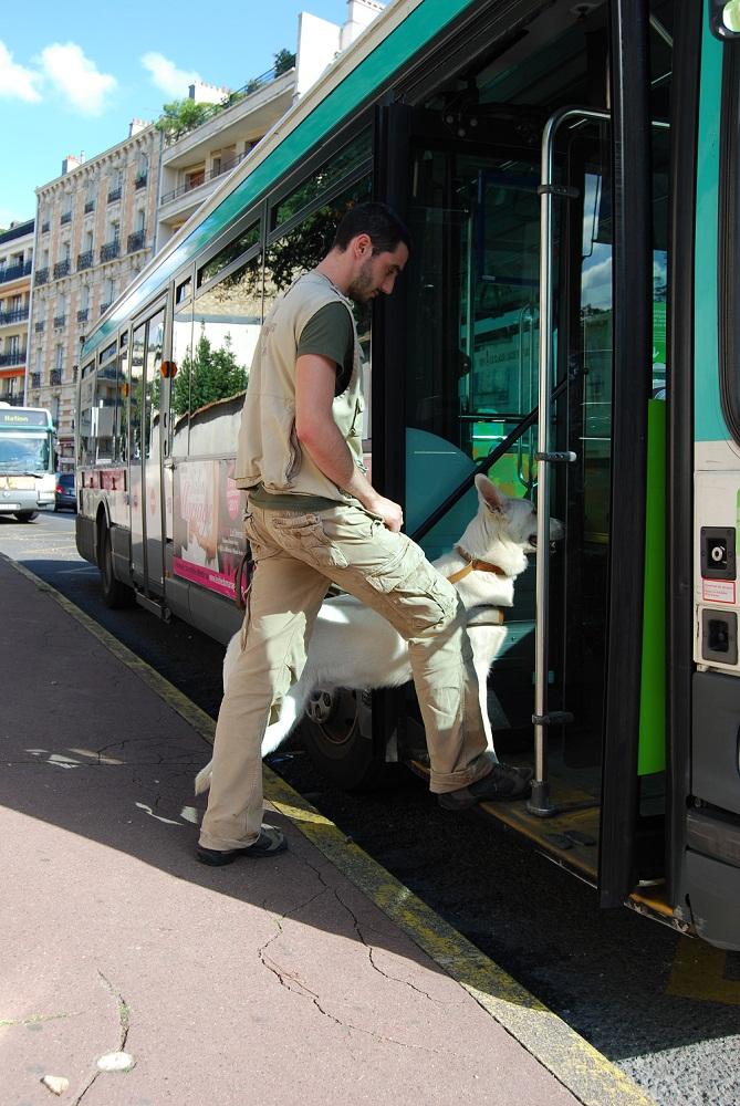 Monter dans un bus