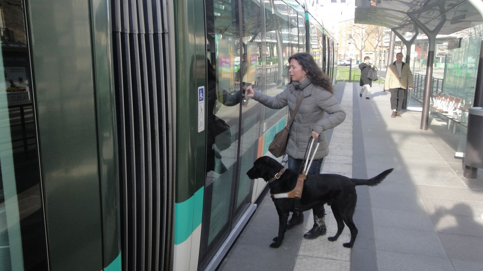 chien-guide-paris-journee-perfectionnement-tramway-02.jpg