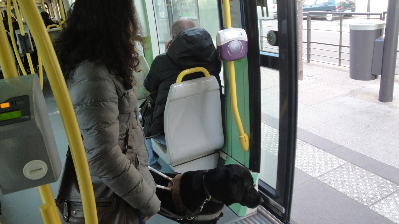 chien-guide-paris-journee-perfectionnement-tramway-04.jpg