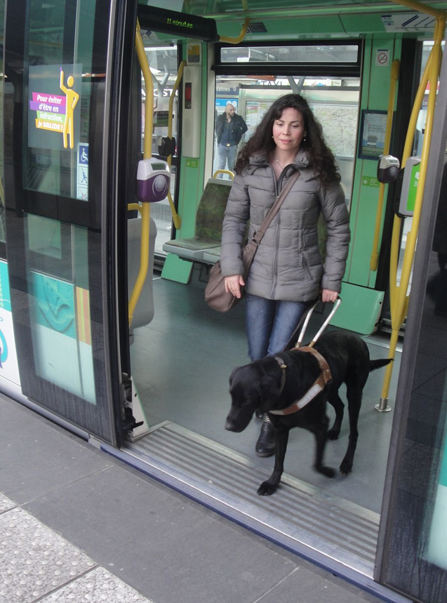 chien-guide-paris-journee-perfectionnement-tramway-05.jpg