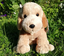 Grande peluche Labrador beige