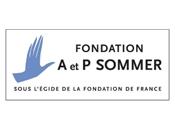 Logo fondation Sommer