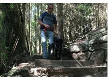 Aller plus loin avec son chien guide
